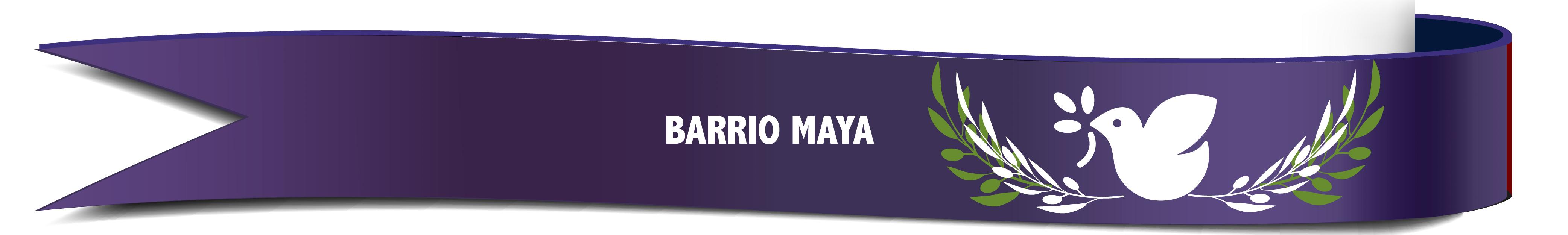 Banners Congre Mundo de Fe-14